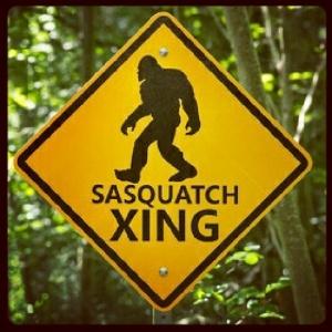 Sasquatch xing